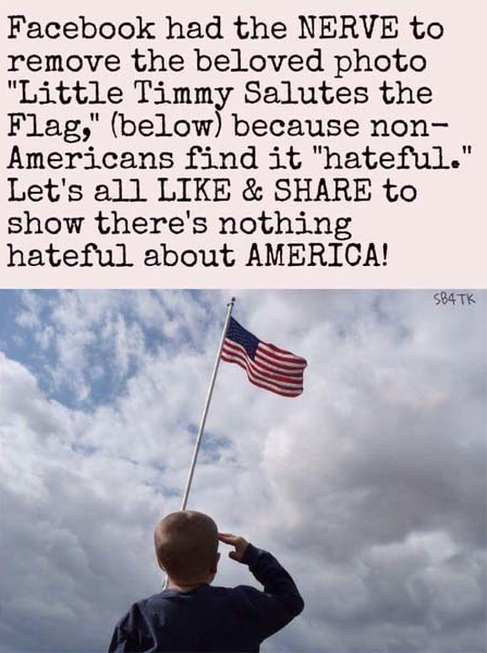 Little Timmy Salutes the Flag