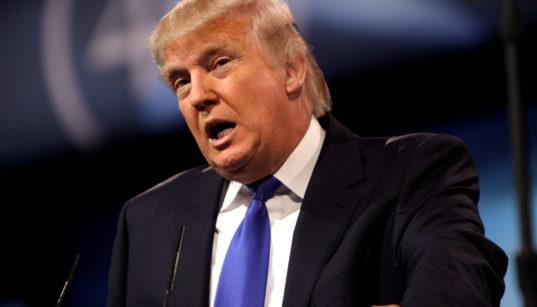 Donald Trump in 2013.