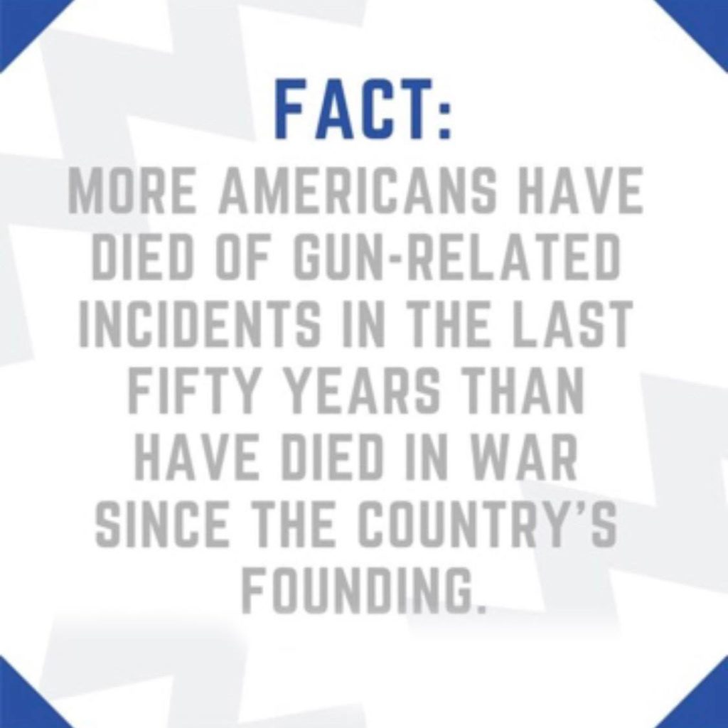 more-americans-have-died-of-gun-related-incidents-50-years-than-wars-nations-founding