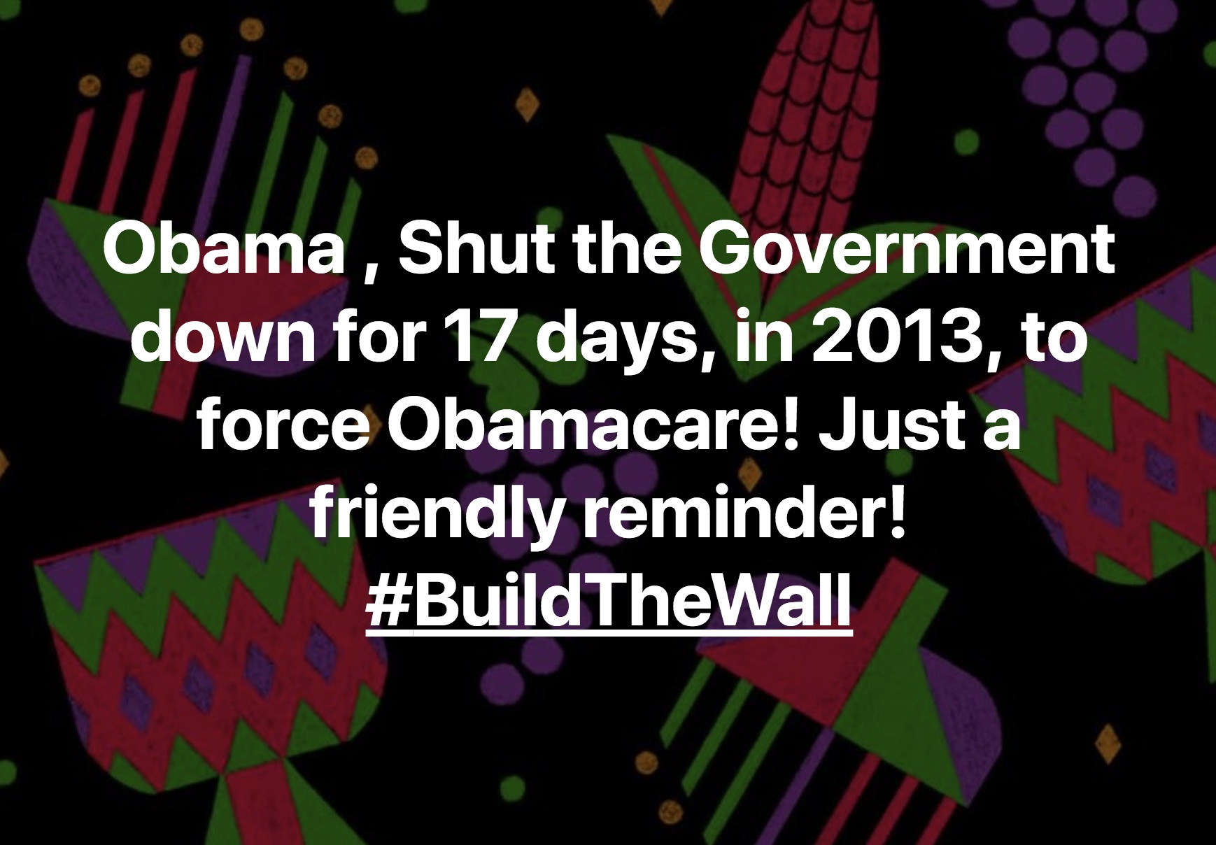 Jim_Benvie_Obama-Shut-the-Government-down-for-17-days-in-2013-to-force-Obamacare-Just-a-friendly-reminder-BuildTheWall