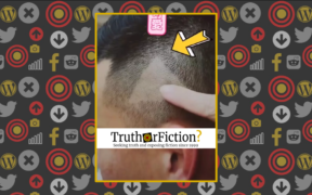 barber_mistakenly_shaves_play_button