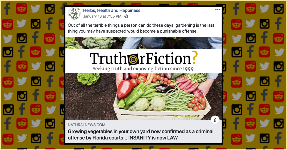 Is Growing Vegetables in Your Own Yard Now Confirmed as a Criminal Offense?