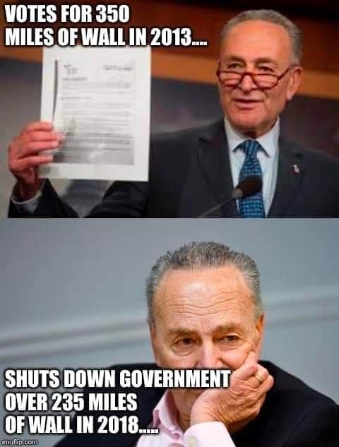 2013-schumer-voted-for-wall-shutdown
