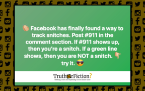 facebook_911_snitch_green
