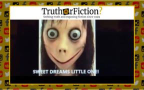 real_momo_videos