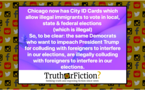 chicago_city_ID_illegal_immigrants_vote