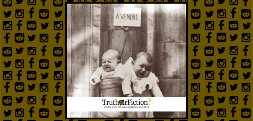 a_vendre_babies_sale_france