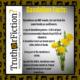 dandelion_facts
