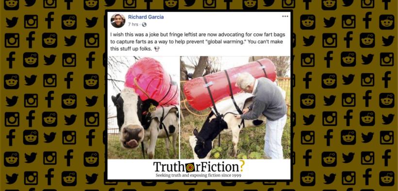 cow_fart_bags_fringe_leftists_
