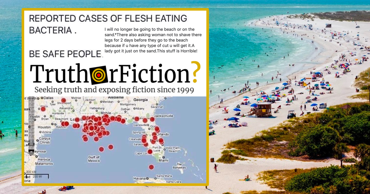 2019 \'Reported Cases of Flesh Eating Bacteria\' Map on ...