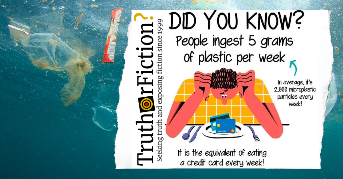 Do People Ingest Five Grams of Plastic Per Week?