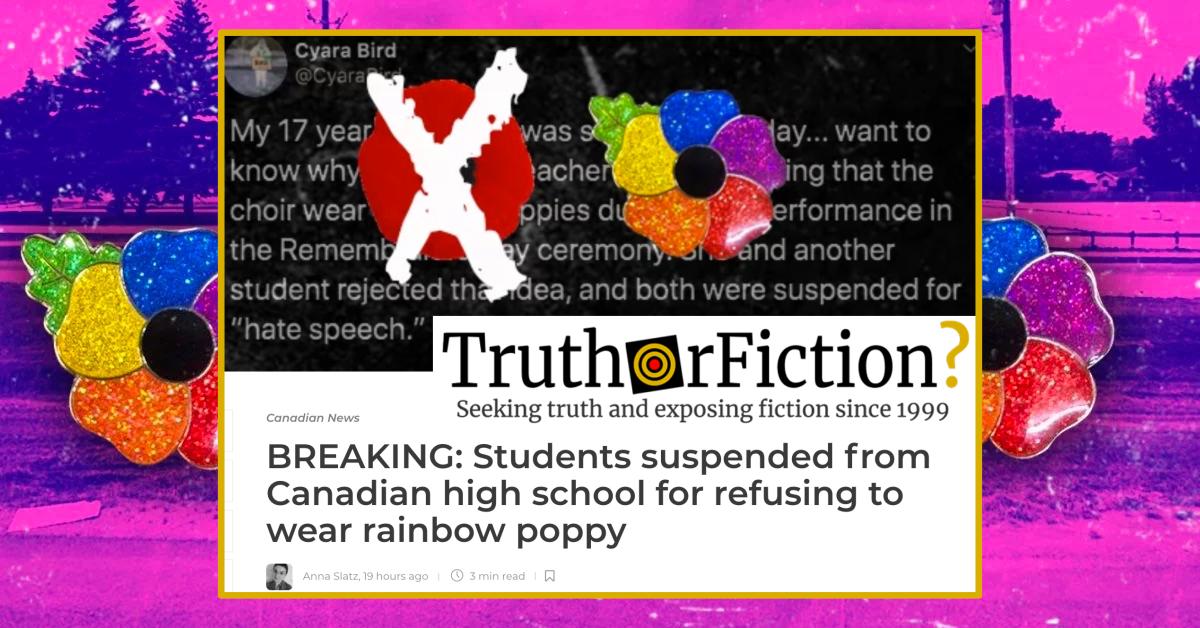 Canadian School Falsely Accused of Suspending Student Over 'Rainbow Poppy'