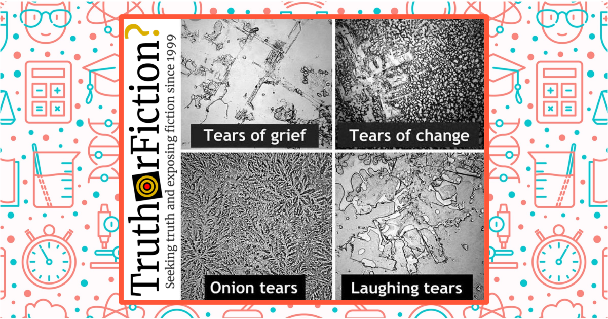 Do Images Show Tears of Grief, Tears of Change, Onion Tears, and Laughing Tears?