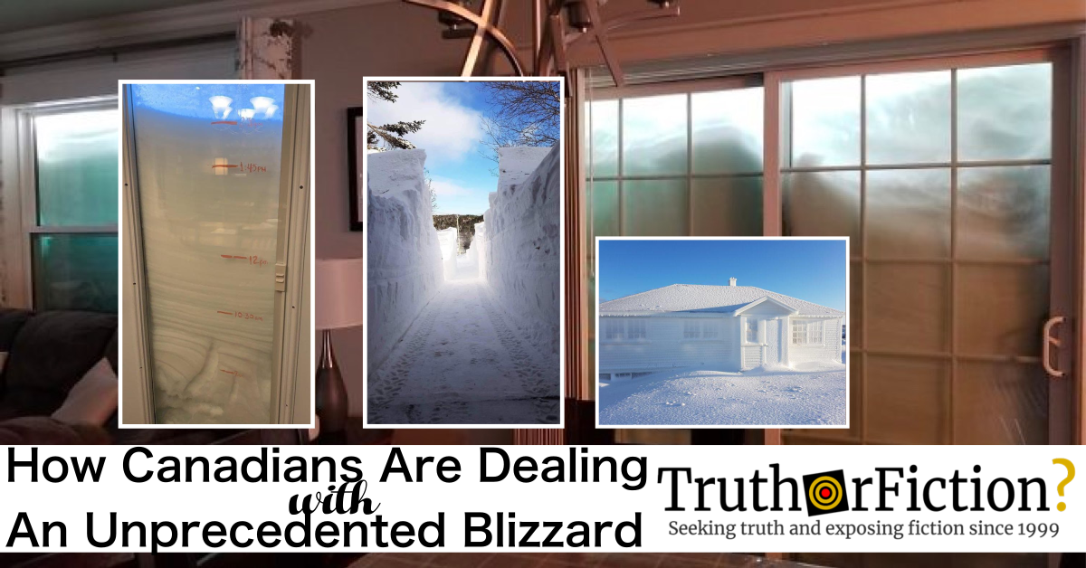 'How Canadians Are Dealing with an Unprecedented Blizzard' Post
