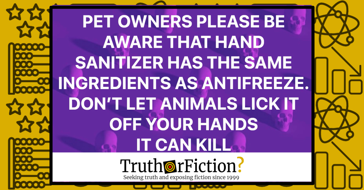 Does Coronavirus Put Dogs at Risk Because Hand Sanitizer Has the Same Ingredients as Antifreeze?
