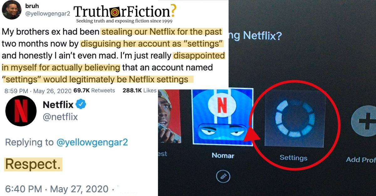 'My Brothers' Ex Stealing our Netflix for the Past Two Months,' Disguising Her Account as 'Settings.' 'Respect.'