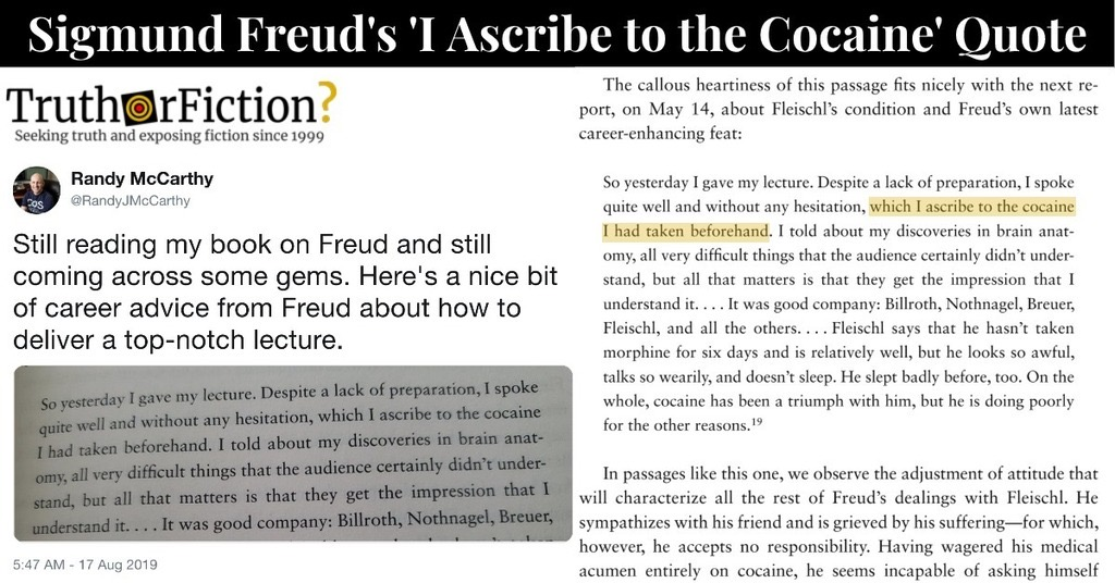 Sigmund Freud: ' …I Ascribe to the Cocaine' Quote