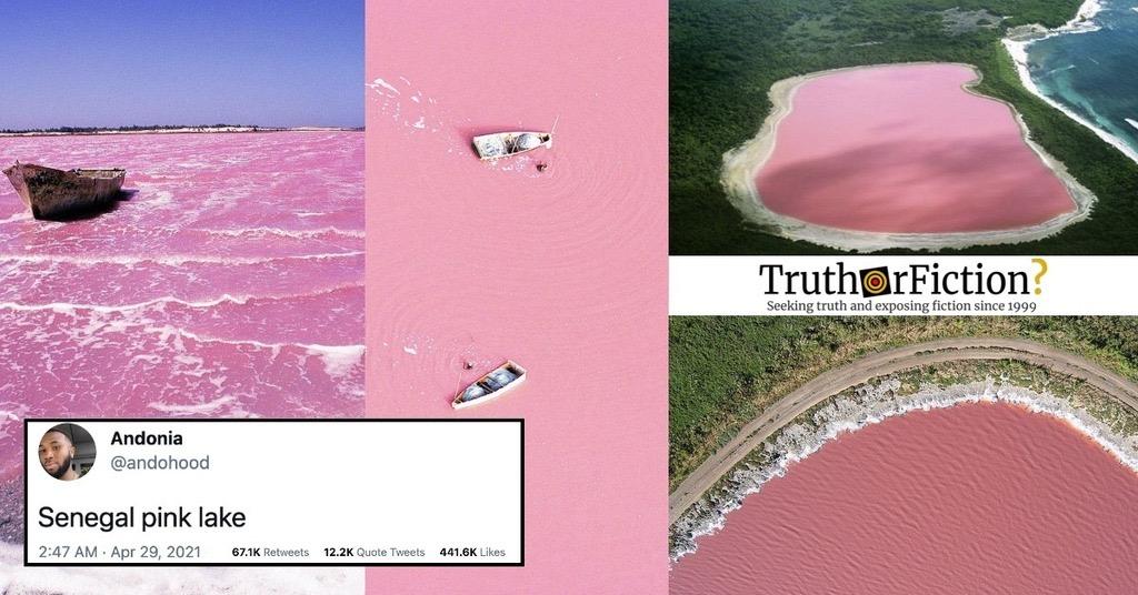 'Senegal Pink Lake'