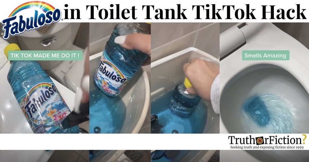 'Fabuloso in Toilet Tank' TikTok Hack