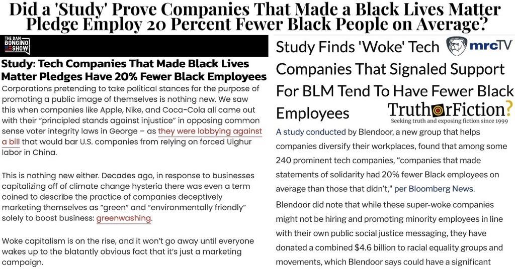 Blendoor 'Black Lives Matter' Study