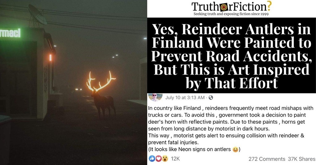 Finland Reindeer Reflective Paint Posts