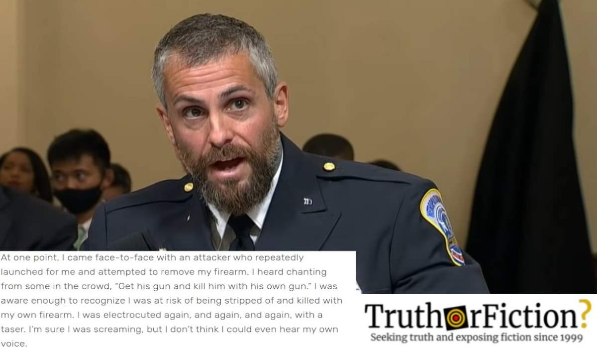 Police Officers' Testimony Refutes Right Wing Capitol Riot Disinformation