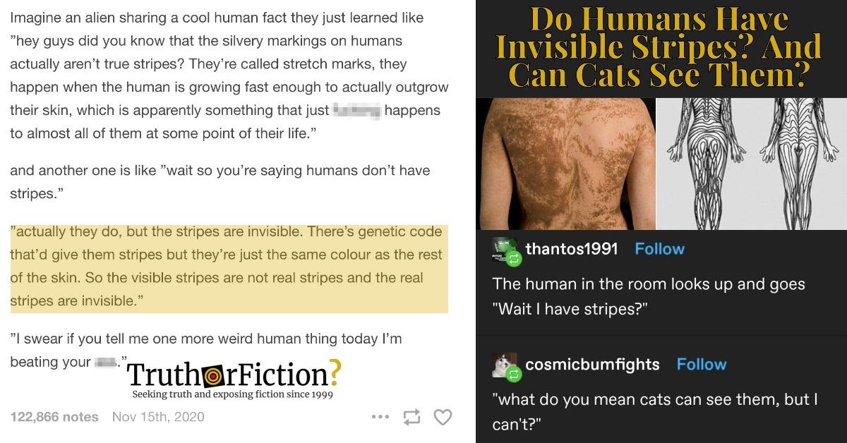 'Humans Have Stripes'