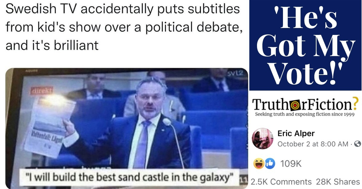 'Swedish TV Accidentally Puts Subtitles from a Kids' Show over a Political Debate'